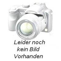 Reparatur Siemens 6ra2107-0bd20